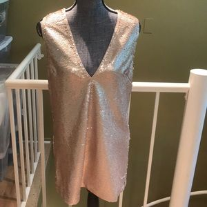 Dresses & Skirts - Sequin Mauve V Neck Dress
